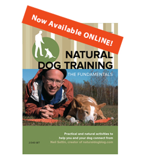 Natural Dog Training Order Button